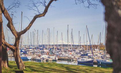 A shot of a Marina filled with sailboats.